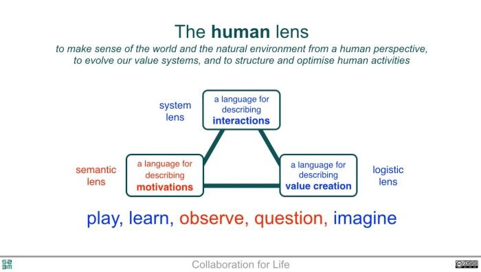 human lens.jpg