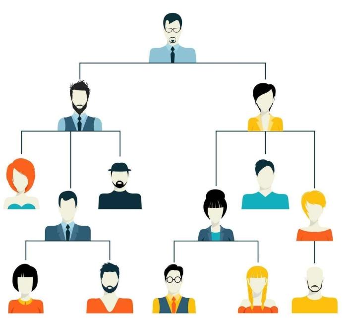 hierarchy.jpg